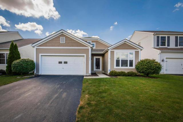 813 Holly Farms Drive, Blacklick, OH 43004 (MLS #217030795) :: RE/MAX ONE