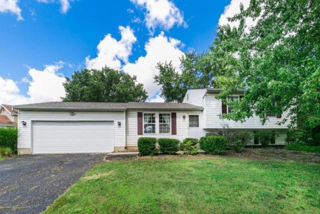 1772 Bierstad Drive, Powell, OH 43065 (MLS #217031096) :: CARLETON REALTY