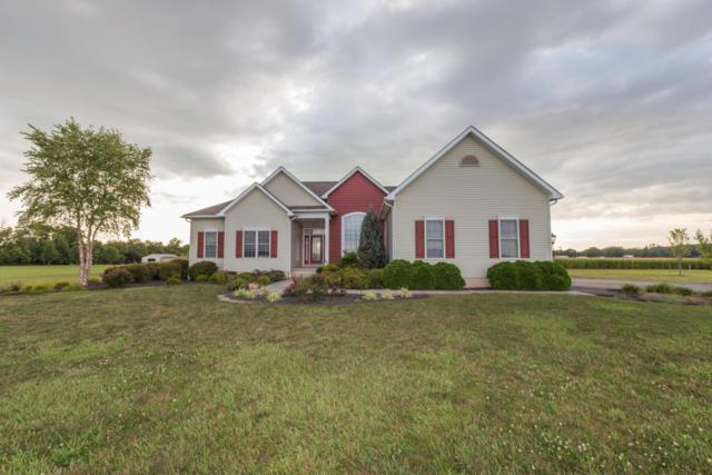 11243 Goodman Road, Ashville, OH 43103 (MLS #217031682) :: The Mike Laemmle Team Realty