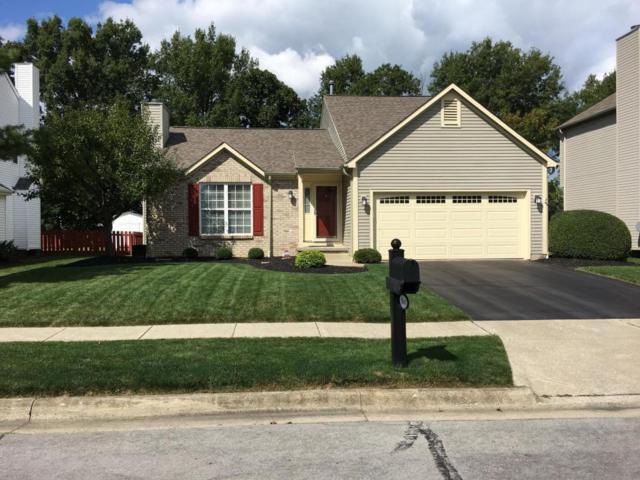 9148 Longstone Drive, Lewis Center, OH 43035 (MLS #217033775) :: Core Ohio Realty Advisors