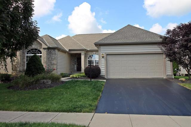 6023 Varwyne Drive, Dublin, OH 43016 (MLS #217034340) :: Berkshire Hathaway Home Services Crager Tobin Real Estate