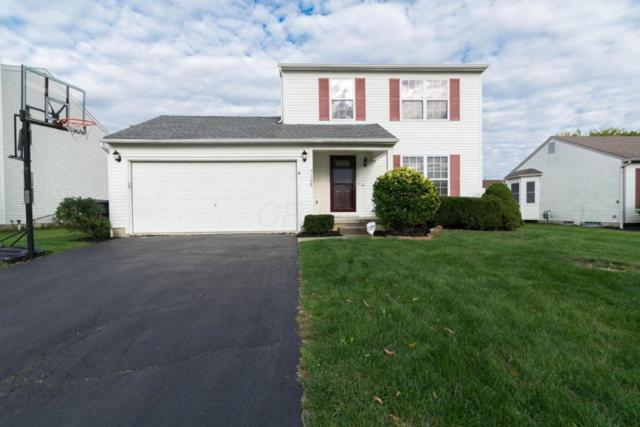 9108 Holquest Drive, Lewis Center, OH 43035 (MLS #217034356) :: Core Ohio Realty Advisors