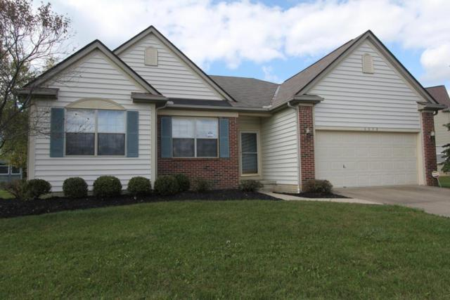6658 Deagle Drive, Westerville, OH 43081 (MLS #217034496) :: Core Ohio Realty Advisors