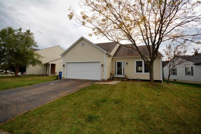 5305 Rifle Drive, Canal Winchester, OH 43110 (MLS #217034656) :: The Mike Laemmle Team Realty