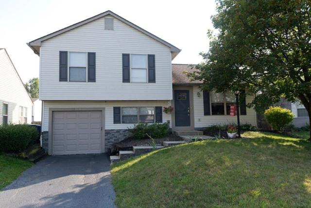 5395 Cherry Bud Court, Columbus, OH 43228 (MLS #217035001) :: The Mike Laemmle Team Realty