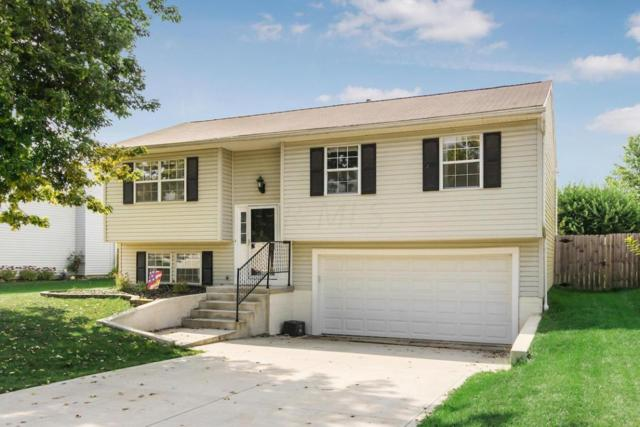 5409 Spring Hill Road, Grove City, OH 43123 (MLS #217035067) :: The Mike Laemmle Team Realty
