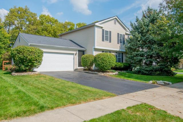 2288 Green Island Drive, Columbus, OH 43228 (MLS #217035102) :: The Mike Laemmle Team Realty