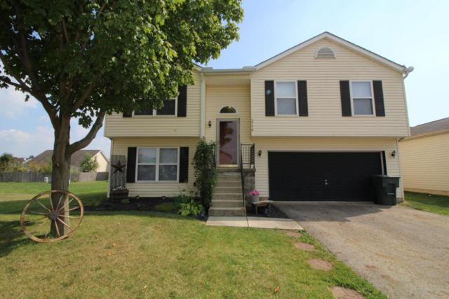 2550 Medora Drive, Grove City, OH 43123 (MLS #217035133) :: The Mike Laemmle Team Realty