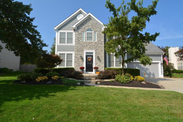 6209 Rising Sun Drive, Grove City, OH 43123 (MLS #217035157) :: The Mike Laemmle Team Realty