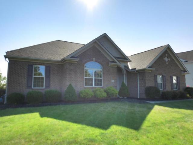 4361 Mcnamara Place, Lewis Center, OH 43035 (MLS #217035169) :: Berkshire Hathaway Home Services Crager Tobin Real Estate