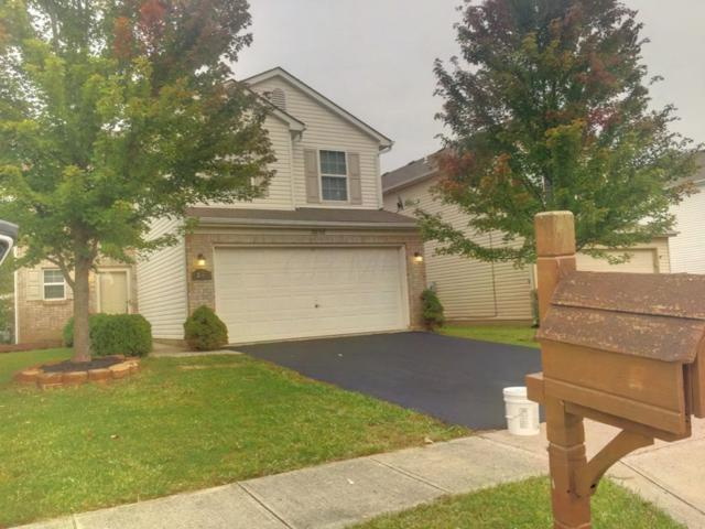 3856 Liriope Street, Canal Winchester, OH 43110 (MLS #217035193) :: CARLETON REALTY