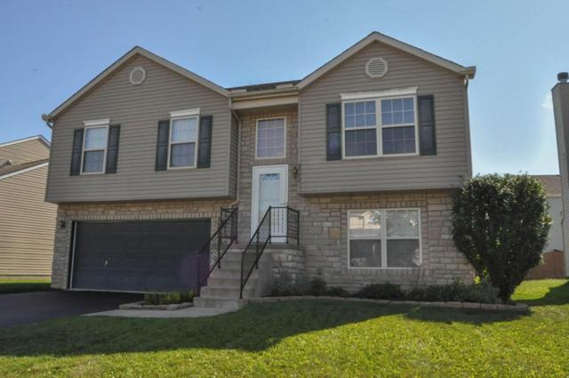 2592 Delamaine Drive, Grove City, OH 43123 (MLS #217035219) :: RE/MAX ONE