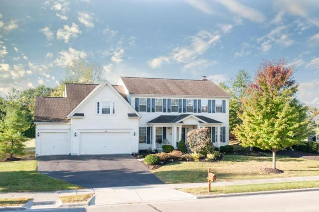 5465 Polar Drive, Lewis Center, OH 43035 (MLS #217035937) :: The Clark Realty Group @ ERA Real Solutions Realty