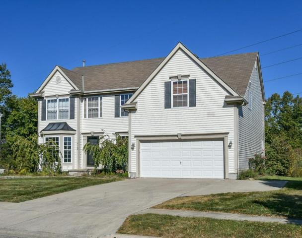 8162 Bellow Park Drive, Reynoldsburg, OH 43068 (MLS #217036483) :: RE/MAX ONE