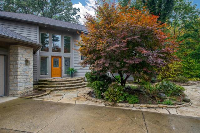 215 Founders Court, Gahanna, OH 43230 (MLS #217036801) :: The Columbus Home Team