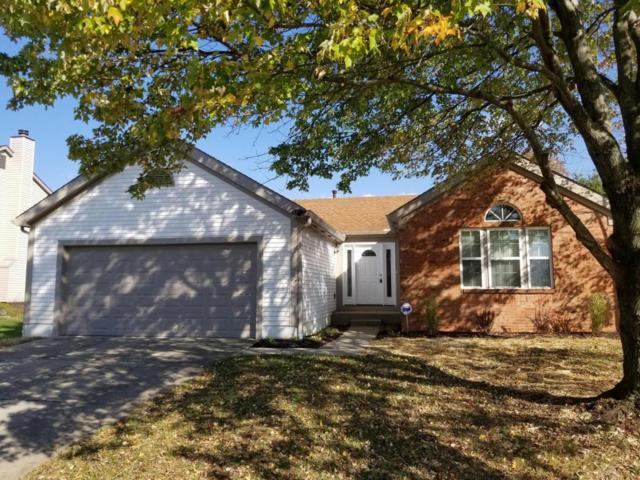 1208 Starlight Drive, Reynoldsburg, OH 43068 (MLS #217037386) :: RE/MAX ONE
