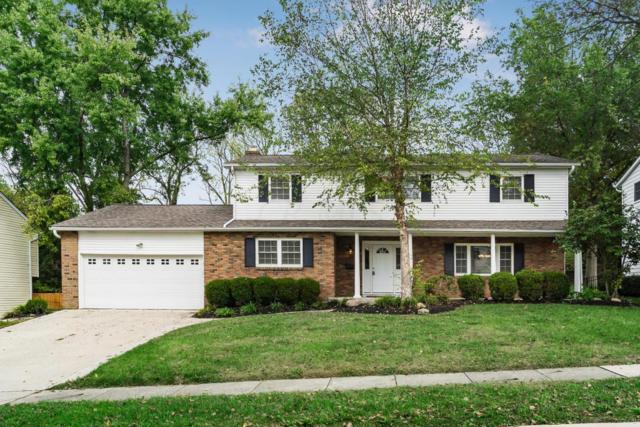 494 Thackeray Avenue, Worthington, OH 43085 (MLS #217037392) :: The Columbus Home Team