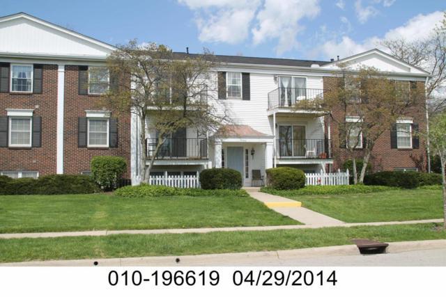 1520 Slade Avenue #204, Columbus, OH 43235 (MLS #217037747) :: CARLETON REALTY