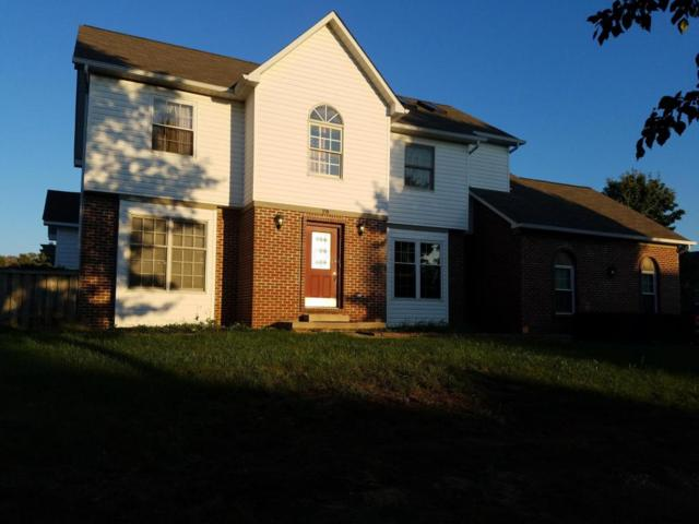 20 Mackenzie Drive, Pickerington, OH 43147 (MLS #217037871) :: The Clark Realty Group @ ERA Real Solutions Realty