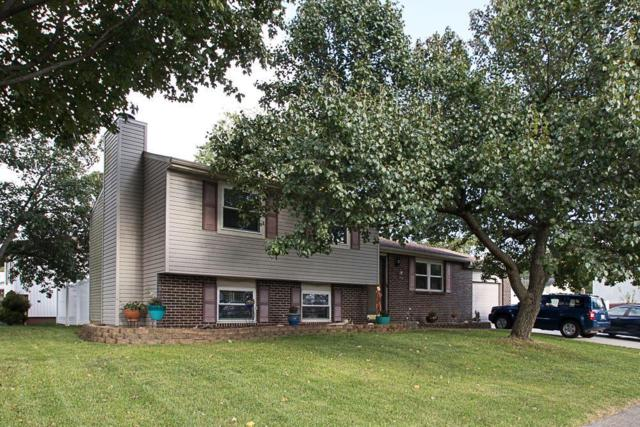 3736 Hendron Road, Groveport, OH 43125 (MLS #217037934) :: RE/MAX ONE