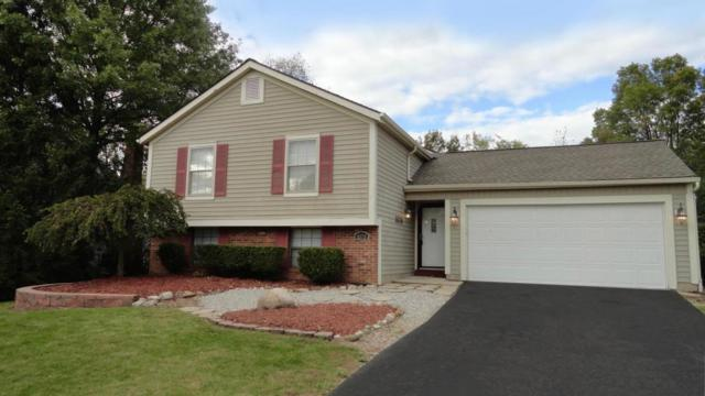5370 Woodville Court, Columbus, OH 43230 (MLS #217038061) :: The Clark Realty Group @ ERA Real Solutions Realty