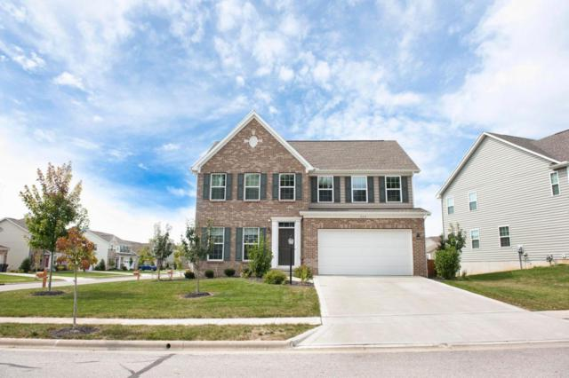 253 Blue Jacket Circle, Pickerington, OH 43147 (MLS #217038138) :: Cutler Real Estate