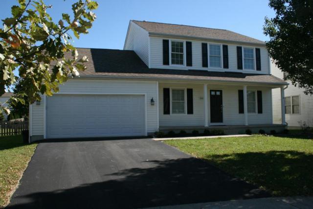 800 Twin Acorn Court, Blacklick, OH 43004 (MLS #217038216) :: Marsh Home Group