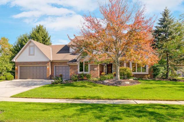 1090 Bluffpoint Drive, Columbus, OH 43235 (MLS #217038271) :: Susanne Casey & Associates