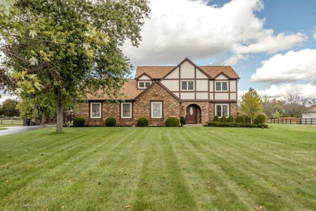 4960 Grove City Road, Grove City, OH 43123 (MLS #217038272) :: The Mike Laemmle Team Realty