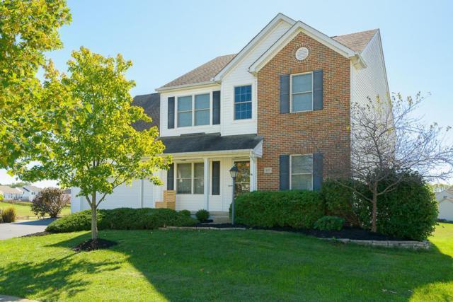 147 Longleaf Street, Pickerington, OH 43147 (MLS #217038277) :: Signature Real Estate