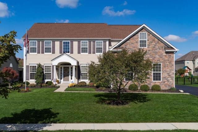 1902 Timber Haven Court, Grove City, OH 43123 (MLS #217038284) :: Cutler Real Estate