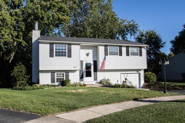 1272 Sweetbay Place, Galloway, OH 43119 (MLS #217038326) :: Signature Real Estate