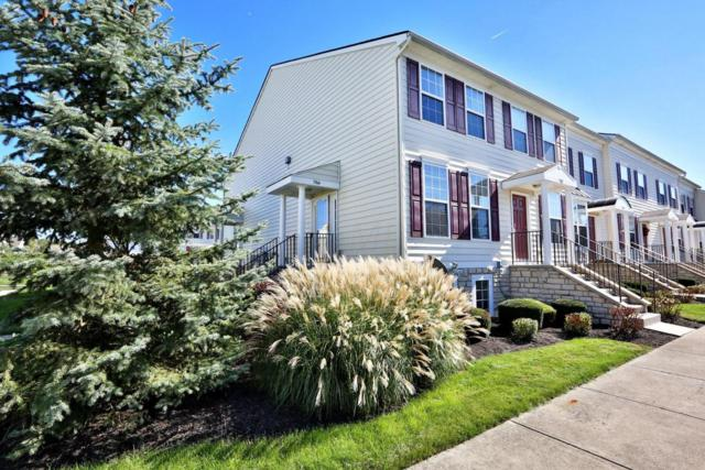 5964 Thunder Gulch Drive, New Albany, OH 43054 (MLS #217038364) :: Cutler Real Estate