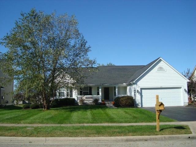 231 Marie Avenue, Pickerington, OH 43147 (MLS #217038403) :: Signature Real Estate