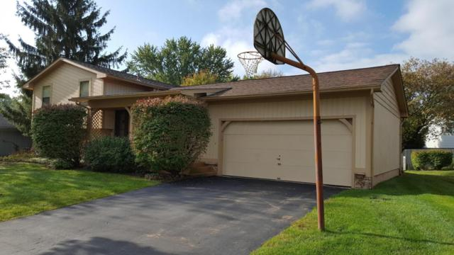 179 Nicole Drive, Westerville, OH 43081 (MLS #217038482) :: Cutler Real Estate