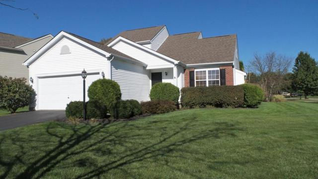 5461 Country Meadow Court, Westerville, OH 43082 (MLS #217038503) :: Susanne Casey & Associates