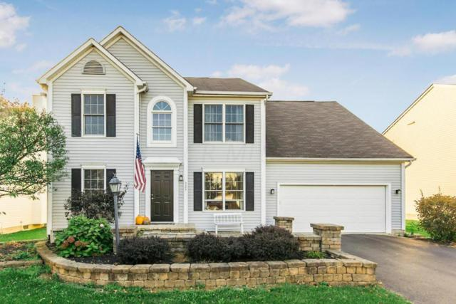 325 Tar Heel Drive, Delaware, OH 43015 (MLS #217038591) :: Signature Real Estate