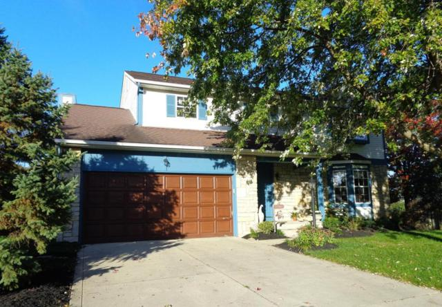 4893 Brixston Drive, Hilliard, OH 43026 (MLS #217038594) :: Cutler Real Estate