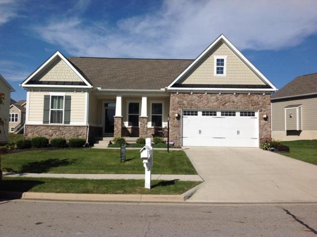 6160 Tournament Drive, Westerville, OH 43082 (MLS #217038782) :: RE/MAX ONE