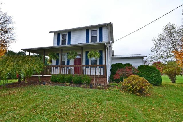 10145 Borror Road, Orient, OH 43146 (MLS #217040123) :: The Mike Laemmle Team Realty