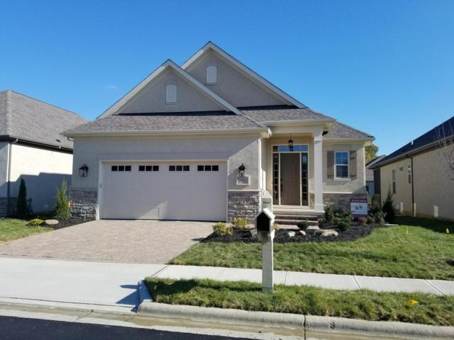 6035 Ellison Drive, Westerville, OH 43082 (MLS #217040435) :: The Raines Group