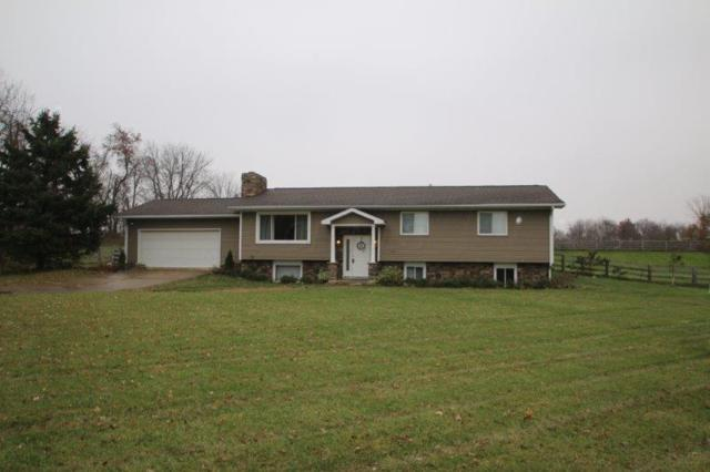 1020 N State Route 61, Sunbury, OH 43074 (MLS #217041084) :: The Clark Realty Group @ ERA Real Solutions Realty