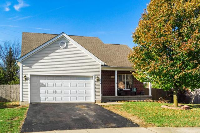 2025 Santuomo Avenue, Grove City, OH 43123 (MLS #217041685) :: Berkshire Hathaway Home Services Crager Tobin Real Estate