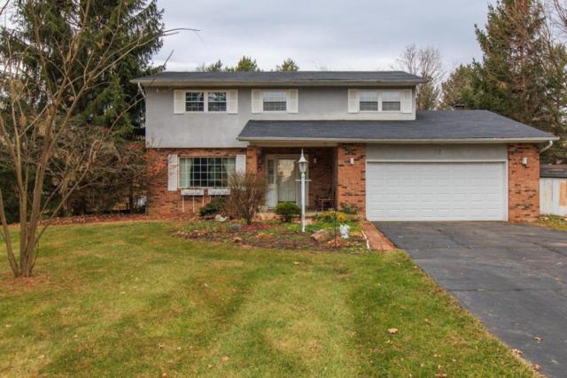 120 Violet Drive, Pickerington, OH 43147 (MLS #217042208) :: Kim Kovacs and Partners