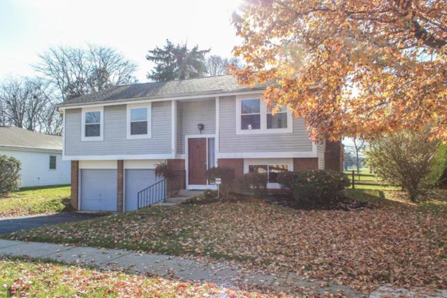 2005 Charmingfare Street, Columbus, OH 43228 (MLS #217042335) :: The Raines Group