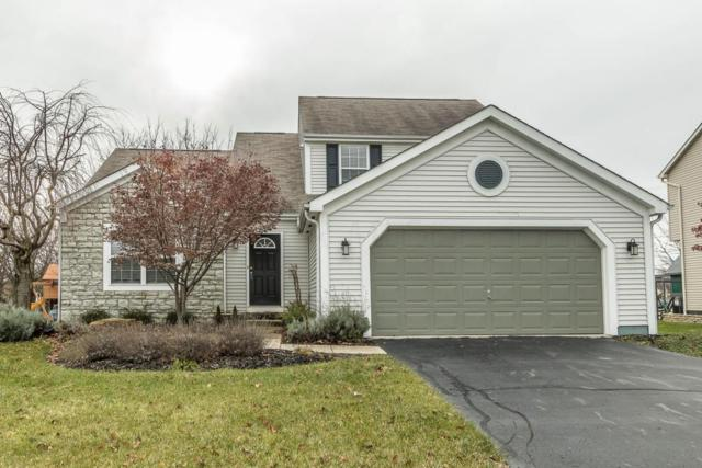 1817 Aurora Avenue, Lewis Center, OH 43035 (MLS #217042652) :: The Clark Realty Group @ ERA Real Solutions Realty