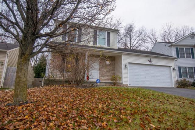 3517 Spring Branch Drive, Grove City, OH 43123 (MLS #217042926) :: The Clark Realty Group @ ERA Real Solutions Realty