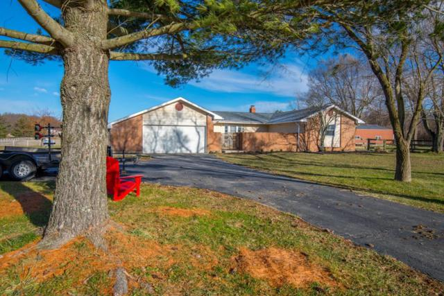 9956 State Route 736, Plain City, OH 43064 (MLS #217043029) :: The Raines Group