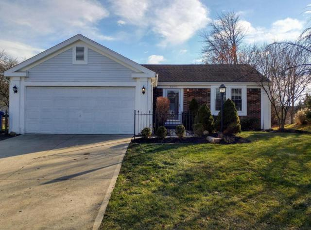 8377 High Ridge Drive, Powell, OH 43065 (MLS #217043057) :: The Clark Realty Group @ ERA Real Solutions Realty