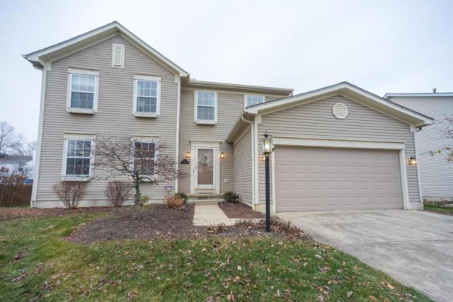 3293 Scioto Farms Drive, Hilliard, OH 43026 (MLS #217043064) :: The Columbus Home Team